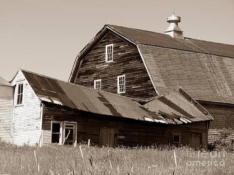 Christine Stack - Old Barn
