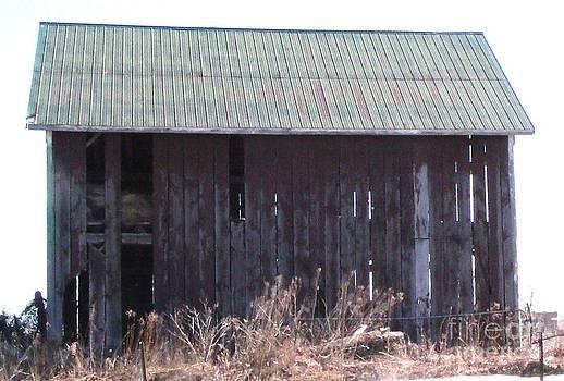 Gail Matthews - Old Barn has seen better days