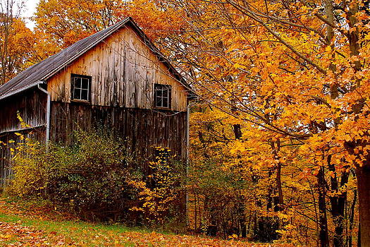 Old Barn in Autumn by Judd Connor