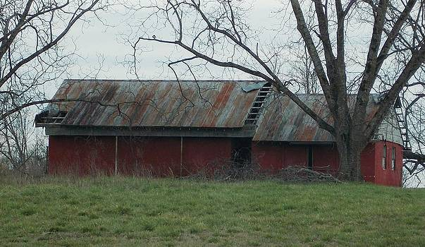 Old Barn in GA by Regina McLeroy