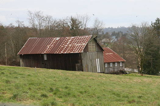 Marv Russell - Old Barn in Snohomish WA