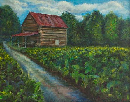Old Barn by Jana Baker