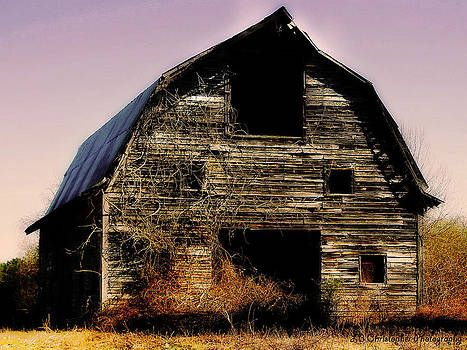 Old Barn by LB Christopher