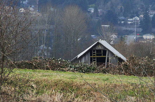 Marv Russell - Old Barn on Snohomish River