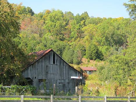 Old Barn by Sarah Manspile