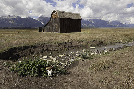 Old Barn by Steve Blair