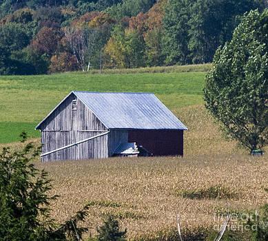 Old Barn by TommyJohn PhotoImagery LLC