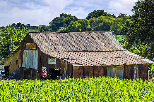 Bruce Bottomley - Old Barn with Phillips 66 Sign