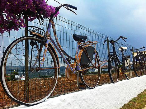 Old Bicycles by Nino Via
