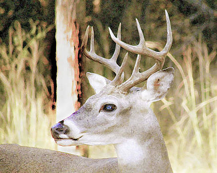 Old Buck Photo Looks Like A Painting by Jerry Moffett