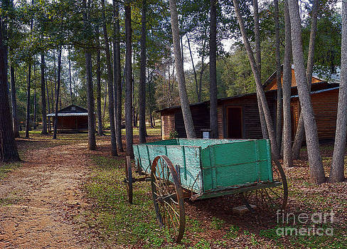 Old Buckboard Wagon in Andersonville GA by Kim Pate