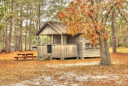 Old cabin in Georgia 2 by Donald Williams