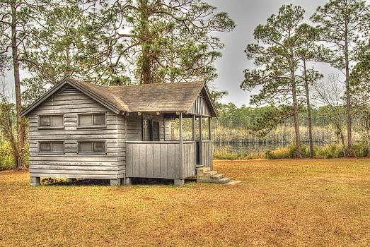Old Cabin in Georgia by Donald Williams