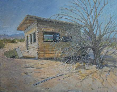 Sandra Lytch - Old Cabin