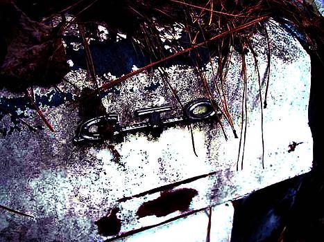 Richard Erickson - old car city GTO