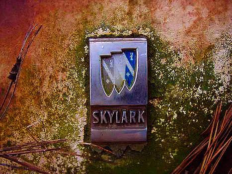 Richard Erickson - old car city skylark