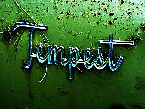 Richard Erickson - old car city Temoest