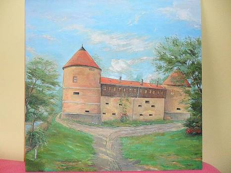 Old castle Sisak by Anselmo Softic