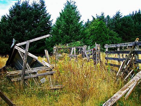 Old Cattle Ranch by Steve Battle