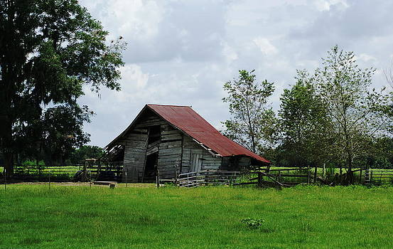 Old Country by Debbie May