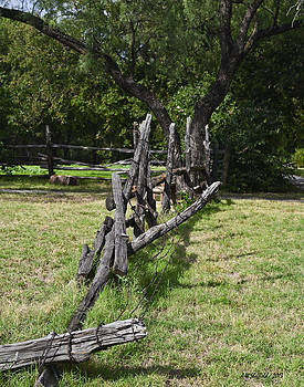 Allen Sheffield - Old Country Fence