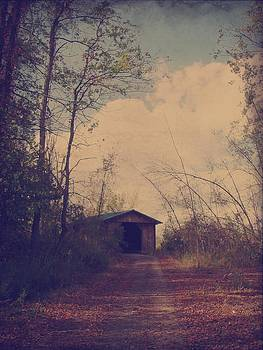 Gothicrow Images - Old Country Road