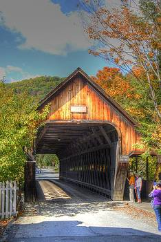 Old Covered Bridge by Donald Williams