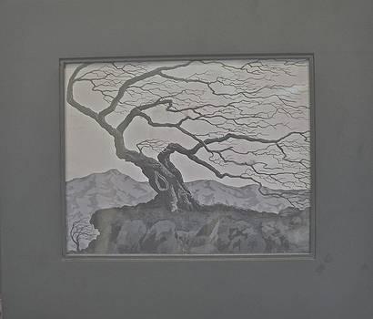 Gnarled Dead Tree by Jim Ellis
