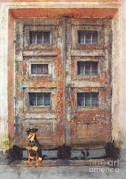 Liane Wright - Old Door - Aged - Cracked - Abandoned