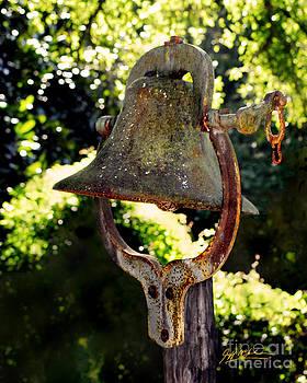 Jeff McJunkin - Old Farm Bell II