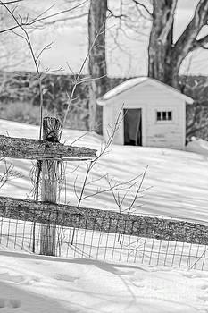 Edward Fielding - Long cold winter