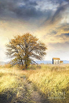 Sandra Cunningham - Old farmhouse in fields/ digital painting