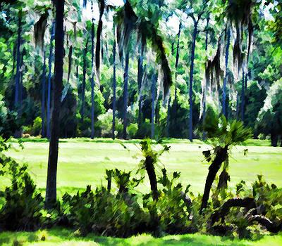Old Florida Landscape by Sandy Poore