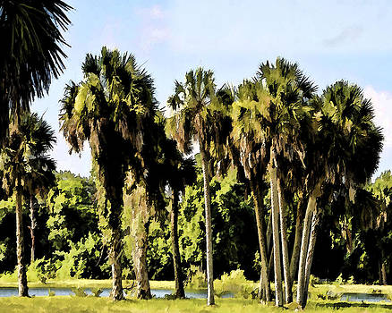 Old Florida Palms II by Sandy Poore
