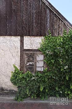 Old German Style House by Gillian Vann