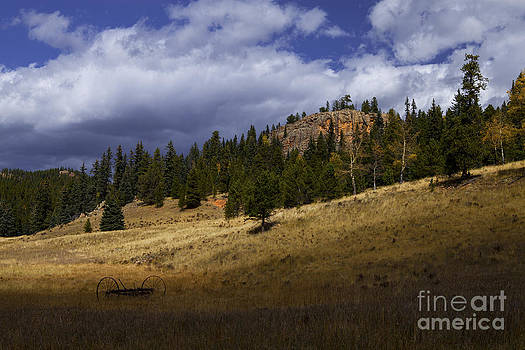 Old Homestead by Barbara Schultheis