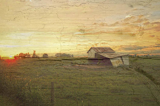 Randall Branham - old horse barn painted on wood barn siding