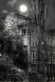 Old House by Svetoslav Sokolov