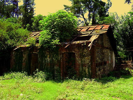 Old Hut by Salman Ravish