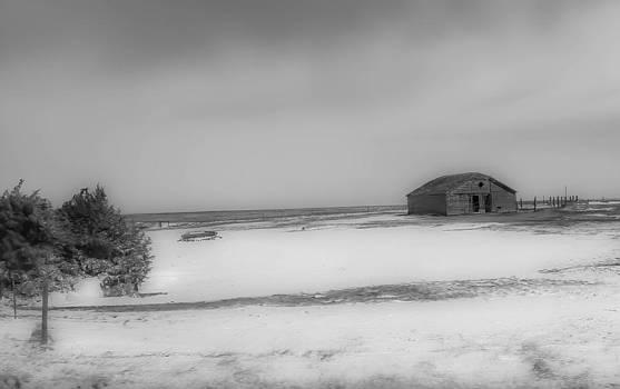 Old Kansas Farm by Shey Stitt