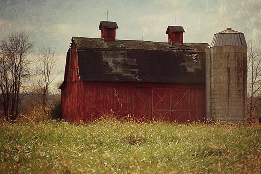 Old MacDonald's Barn by Amanda Lomonaco