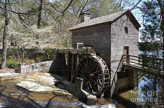 Old Mill by Adelmo Leite de Sa