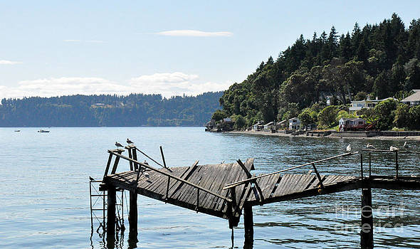Old Pier On Maury Island by Tanya  Searcy