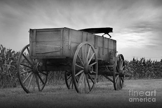 Old Prairie Wagon by E B Schmidt