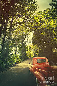 Sandra Cunningham - Old red pickup truck driving on dirt road