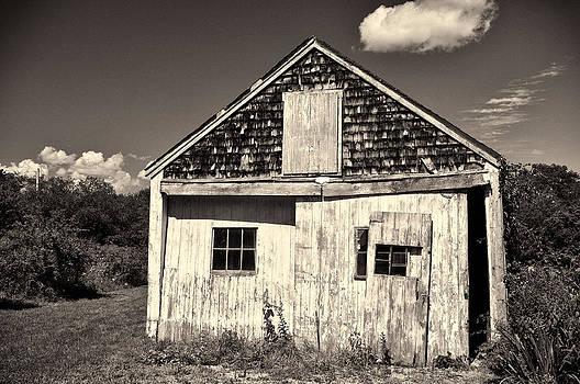 Old Rural Building by Nancy De Flon