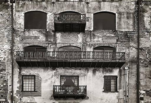 Old Savannah by Mario Celzner