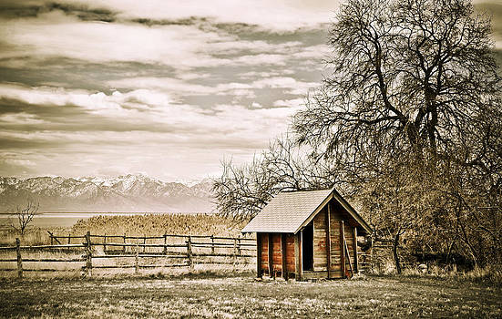 Marilyn Hunt - Old Shed and Mountains
