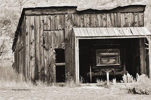 Kae Cheatham - Old Shed and Wagon - Sepia