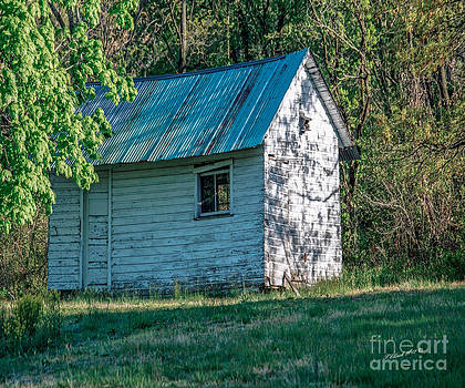 Old Shed by Timothy Clinch